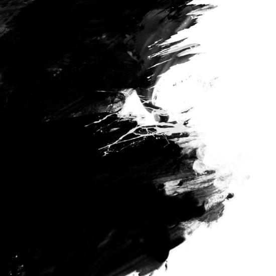Musta ja valkoinen
